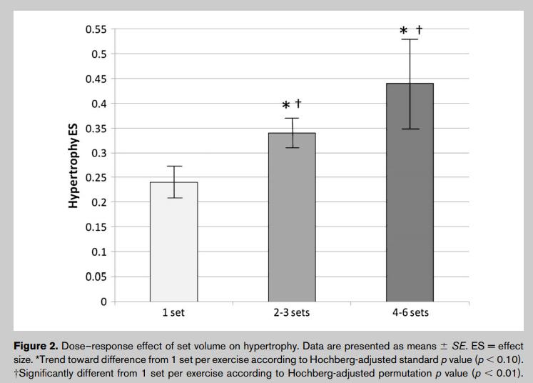 effect du nombre de série sur l'hypertrophie