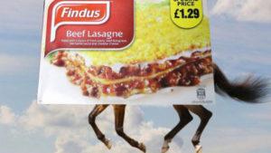 lasagne de cheval findus